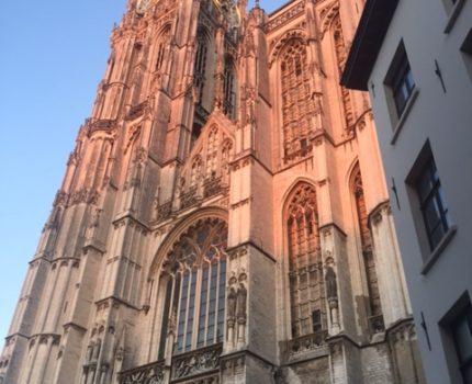 Foto.Katedraal - Civiele cassatieadvocaten en rechtsvorming door de Hoge Raad - van Swaaij Cassastie & Consultancy - cassatieadvocaat - cassatie advocaat