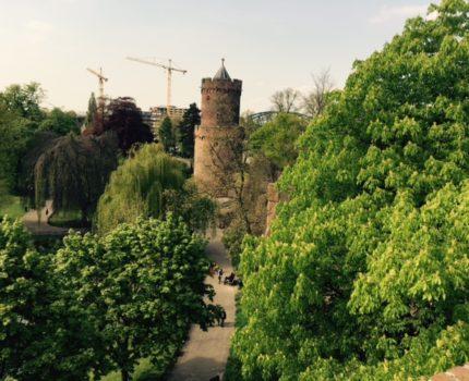 """Foto.Kronenburgerpark.mei.2015.2 - Taallesjes voor juristen (36): hoezo """"feiten en omstandigheden""""? - van Swaaij Cassastie & Consultancy - cassatieadvocaat - cassatie advocaat"""