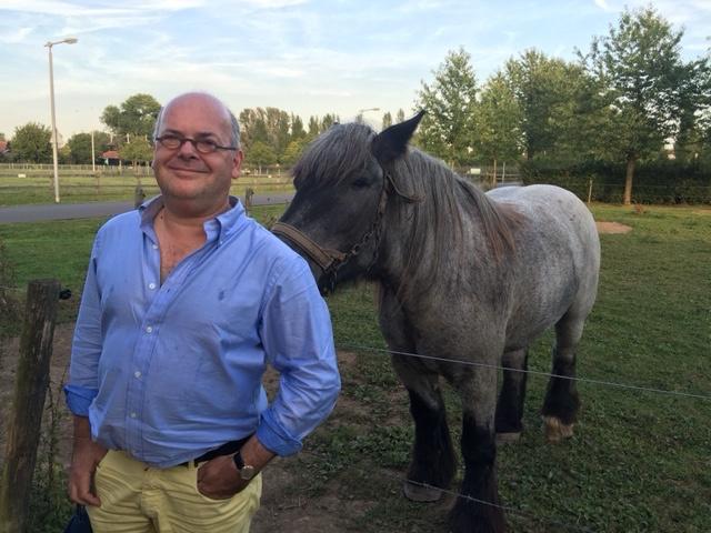 foto-paard-2