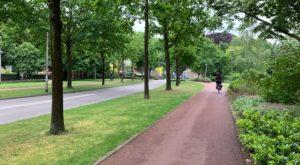 Foto.Prins Bernhardstraat - Anonimisering van uitspraken van de Hoge Raad onder de maat - van Swaaij Cassastie & Consultancy - cassatieadvocaat - cassatie advocaat