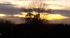 Foto.zonsondergang - Het beslisschema van Hartlief: meer dan update van de 'deelregels' van Brunner - van Swaaij Cassastie & Consultancy - cassatieadvocaat - cassatie advocaat
