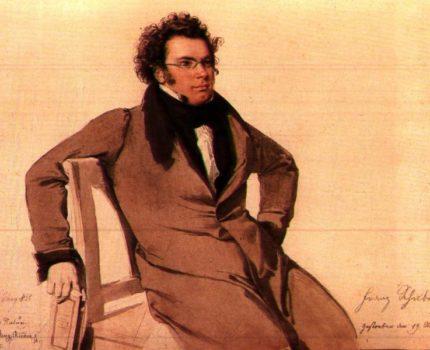 Franz_Schubert_by_Wilhelm_August_Rieder (bron Wikipedia)