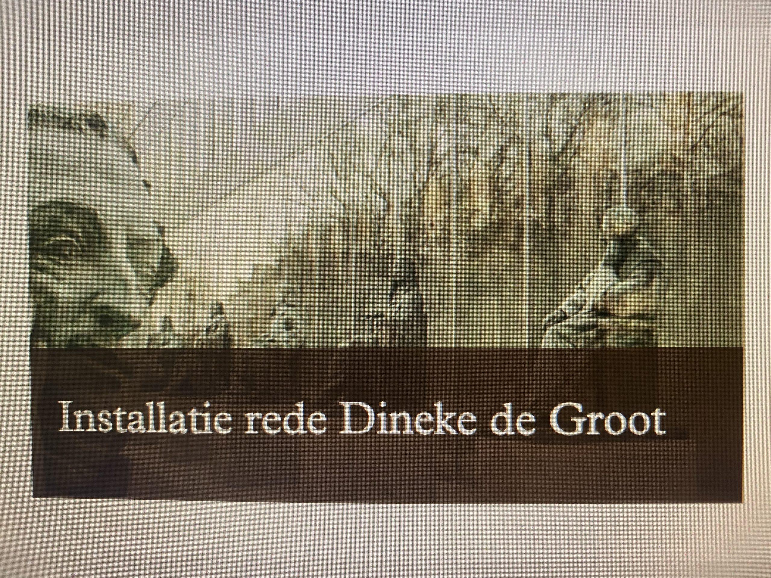 Installatie rede Dineke de Groot - - van Swaaij Cassastie & Consultancy - cassatieadvocaat - cassatie advocaat