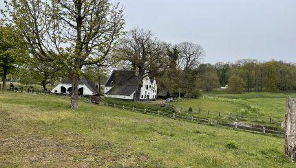 Sonsbeekpark - Verloren puzzelstukje kan klimaatstrijd vooruithelpen: herstel van het 'publiek domein' - van Swaaij Cassastie & Consultancy - cassatieadvocaat - cassatie advocaat