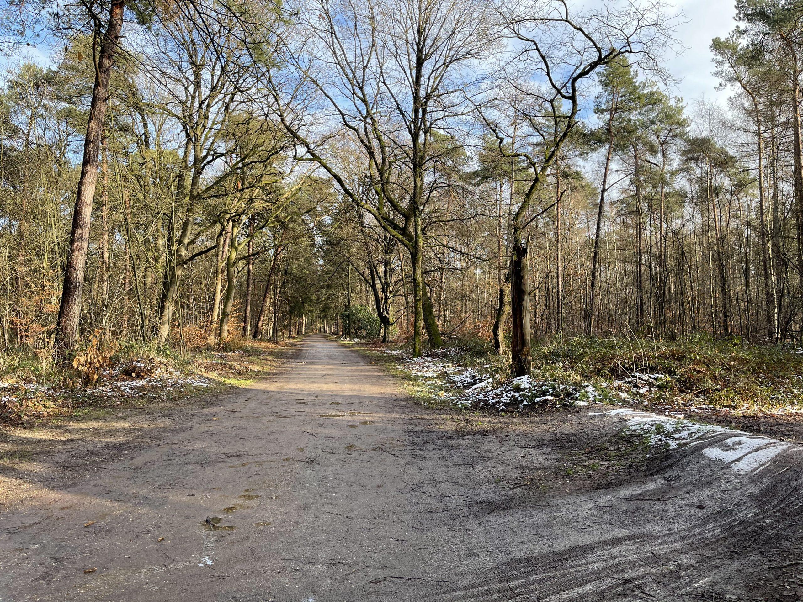 Tussen Nijmegen en Groesbeek - - van Swaaij Cassastie & Consultancy - cassatieadvocaat - cassatie advocaat