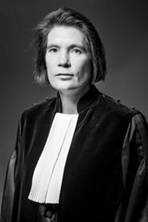 de Groot - - van Swaaij Cassastie & Consultancy - cassatieadvocaat - cassatie advocaat
