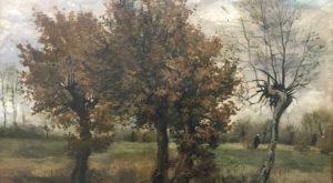 foto.Bomen - Koninklijk lintje voor Jan Brouwer en Laurence Gormley - van Swaaij Cassastie & Consultancy - cassatieadvocaat - cassatie advocaat