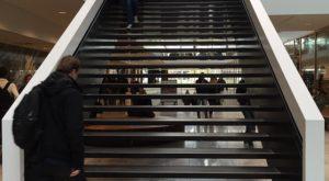 foto.Grotiusgebouw.Trap - Oud-coördinerend vicepresident Hof Arnhem-Leeuwarden haalt uit naar raad voor de rechtspraak - van Swaaij Cassastie & Consultancy - cassatieadvocaat - cassatie advocaat