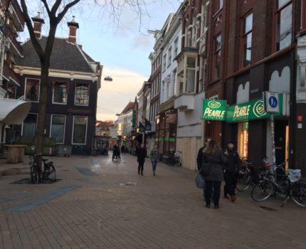 foto.Poelestraat - Simplisme op rechtspraak.nl - van Swaaij Cassastie & Consultancy - cassatieadvocaat - cassatie advocaat
