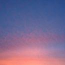foto.lucht.1februari2014 - Hoezo stadswinkel?  - van Swaaij Cassastie & Consultancy - cassatieadvocaat - cassatie advocaat