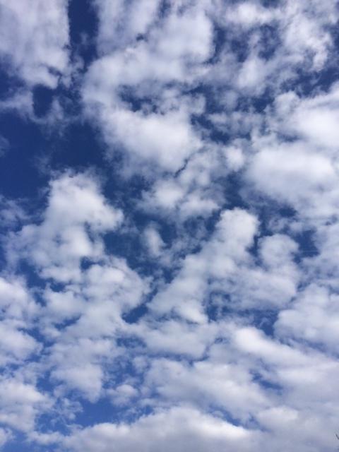 foto.lucht.25.2.14